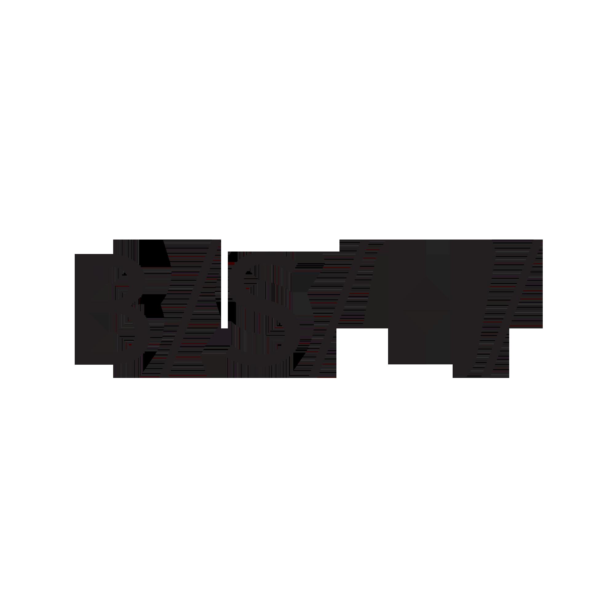 Logo_Dateien_BSH_color