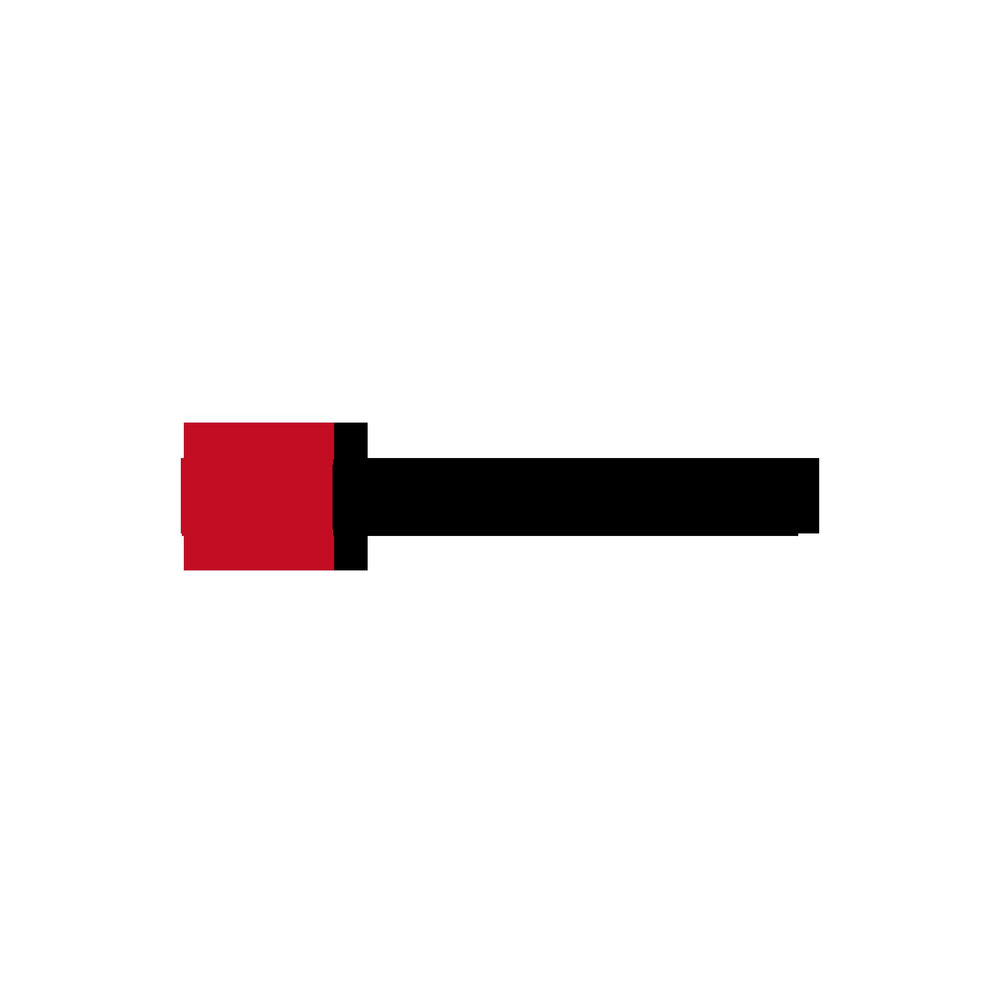 Logo_Dateien_Raise3D_color